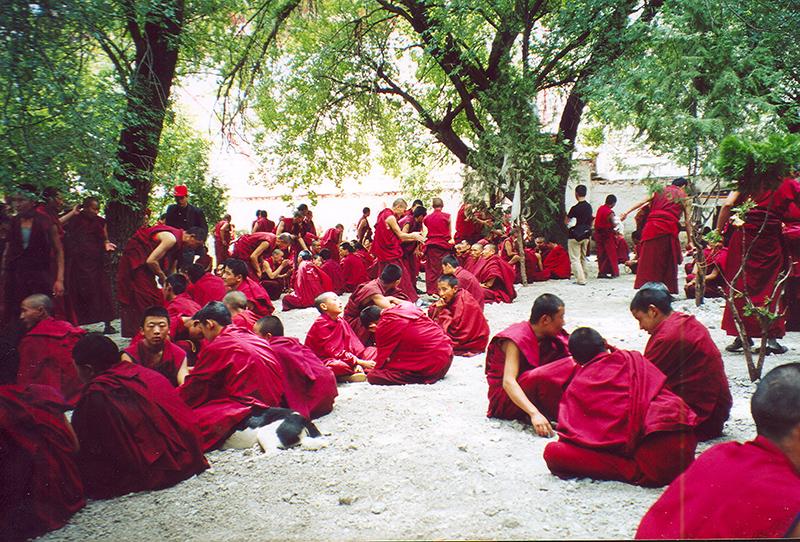 Monaci durante la discussione, con il battito delle mani per passare la parola, su questioni teologiche.