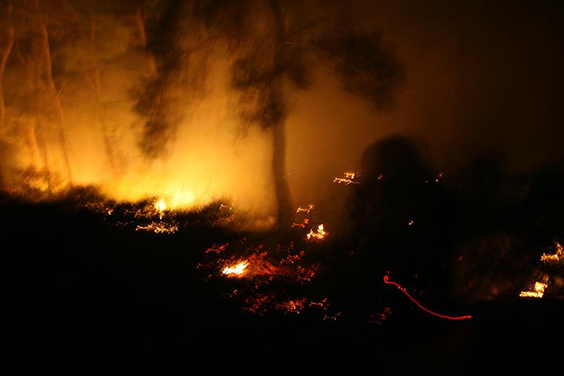 Le immagini del devastante incendio sul Gargano che ha causato la morte di tre persone, la distruzione di abitazioni e campeggi, ridotto in cenere decine di ettari di boschi
