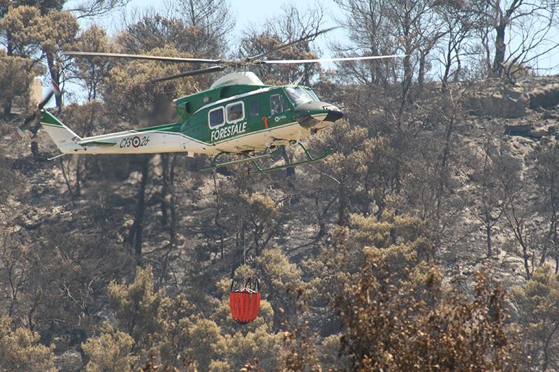 Un elicottero del corpo forestale dello stato al lavoro